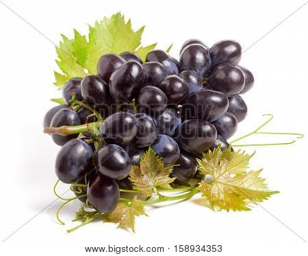 bunch of blue grapes with leaf isolated on white background.