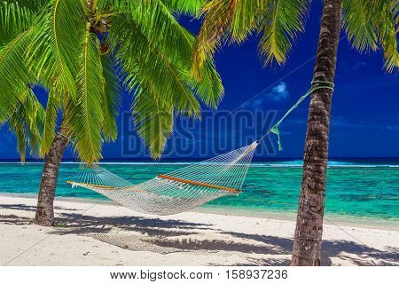 Hammock between palm trees on tropical beach of Rarotonga, Cook Islands, South Pacific