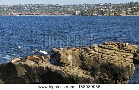 Day along coastal La Jolla a tourist destination in San Diego,California, USA