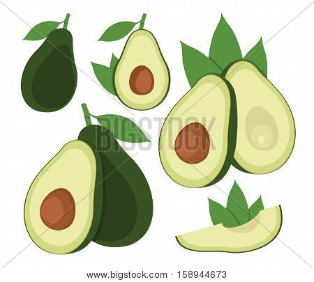 Avocado set. Cartoon vector icon isolated on white background. Vector illustration.