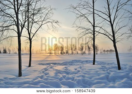 Beautiful early winter sunset in the snow-covered park