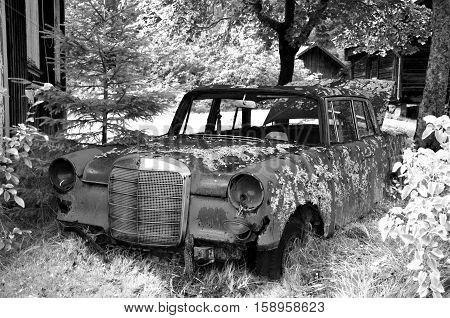 old wreck car in car cemetery in sweden landscape