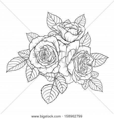 beautiful monochrome black and white bouquet rose isolated on background. Hand-drawn. design greeting card and invitation of the wedding birthday Valentine's Day mother's day and other holiday