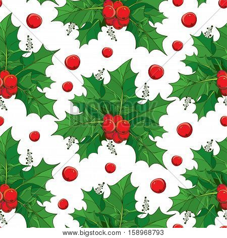 Vector seamless pattern with outline green leaves and red berries of Ilex or European Holly on the white background. Traditional Christmas and Happy New Year symbol in contour style for winter design.