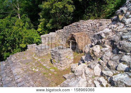 Mayan pyramid in a jungle in Mexico