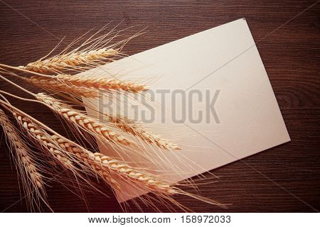background with group of wheat spica and paper