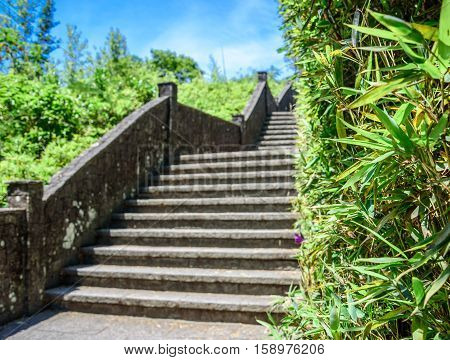 High stone staircase with a handrail and bright green bamboo wall at Mirante Dona Marta in National Park of Tijuca, Rio de Janeiro, Brazil