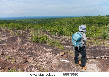 Person standing on top of a mountain. endless forest. Tropical forest of South America