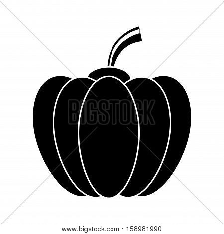 pictogram pumpkin harvest bittersweet vegetable icon vector illustration eps 10