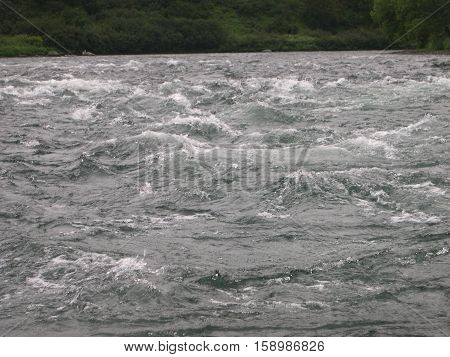 Fast mountain river on Kamchatka. Favorite place of rainbow trout. Foggy morning. summer. Russia, the Kamchatka Peninsula