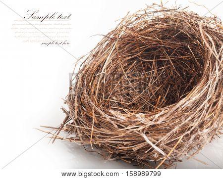 Empty nest isolated on white background