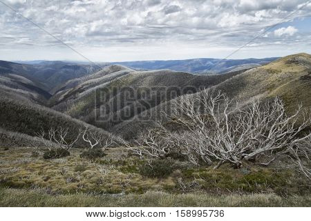 Beautiful view from mount Hotham on great alpine road in Victoria, Australia