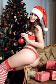 Beautiful brunette sexy Santa Clause in elegant panties hat and bra. Fashion portrait of model girl indoors with Christmas tree. Cute woman in lace red lingerie. Female ass in underwear. Naked body poster