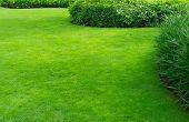 Landscaped Formal Garden,front yard with garden design,Peaceful Garden poster