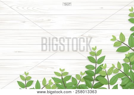 Wood Plank Pattern And Texture With Green Leaves For Natural  Background. Abstract Background For Pr