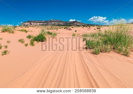 Road In The Sand Dunes Of The Desert, Coral Pink Sand Dunes State Park, Kanab, Utah.