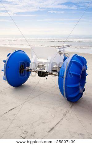 Amphibious beach toy
