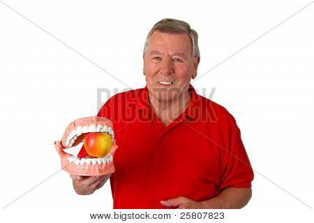 Male senior with teeth model isolated on white background poster