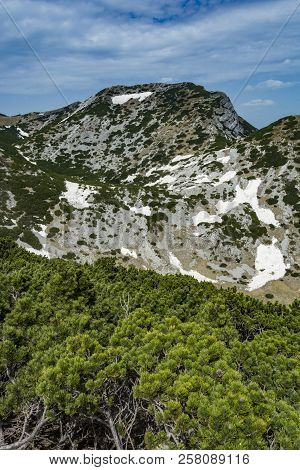 Landscape Rocky Mountains National Park
