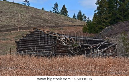Old Turn Of The Century Log Cabin Homestead