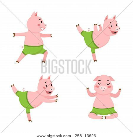 Pig Doing Exercises Icon Set. Fitness, Training, Stretching. Yoga Concept. Vector Illustration Can B