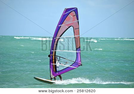 Windsurfer Off Virginia Key