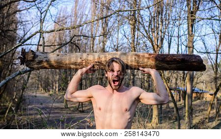 Explore Woods. Man Beaded Brutal Sexy Lumberjack Carry Big Heavy Log. Man Brutal Strong Attractive G