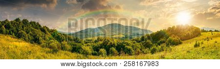 Panorama Of Mountainous Countryside. Forest On A Grassy Meadow. High Mountain In The Distance. Wonde