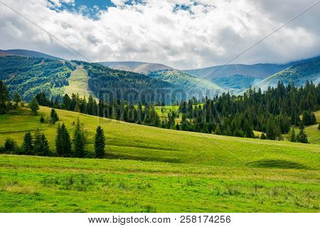 Beautiful Green Valley With Coniferous Forest. Wonderful Landscape In Mountains. Huge Cloud Almost C