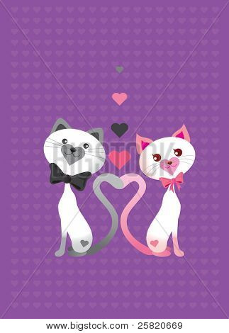 Valentine Love cat