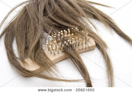 Ladies hairpiece