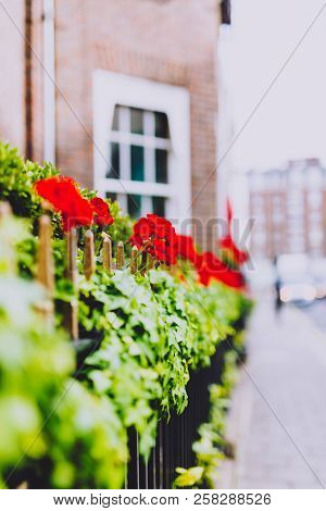 London, United Kingdom - August 23rd, 2018: Beautiful London Fences With Flowers And Decor Shot At S