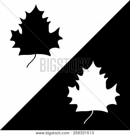 Maple Leaf Sign Set. Plane Icons Isolated On Black And White Background. Mono Nature Logo. Botany Wo