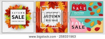 Autumn Sale Leaves. Halloween And Thanksgiving Fall Season Banner Concept Set. Realistic Illustratio