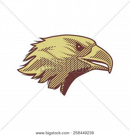 Eagle Head Logo Vector & Photo (Free Trial) | Bigstock