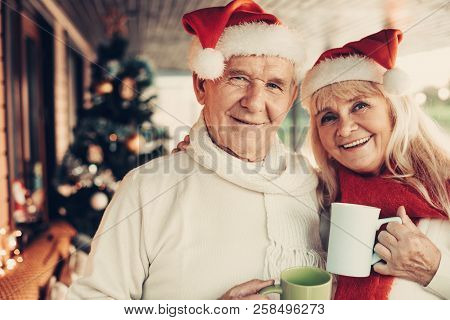 Cheerful Glancing Elderly Twosome Celebrating Christmas Together