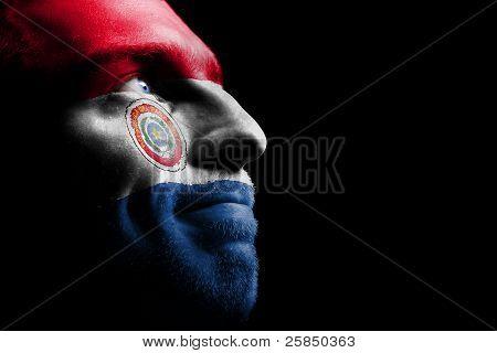 Sports fan - a patriot.