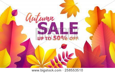 Text Hello Autumn, Discounts From 50. Autumn Sale Flyer Template For Your Text. Vector Background Of