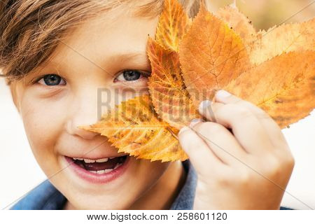 Boy On A Breeze In An Autumn Village. Autumn Child With Autumnal Mood. Hello Autumn And Leaf Fall Dr