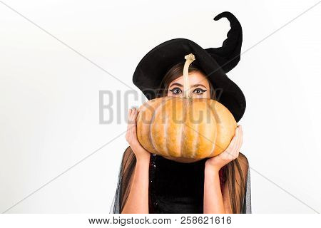 Halloween Witch With A Carved Pumpkin. Happy Halloween Stickers. Halloween Holiday Concept. Ready Fo