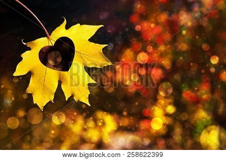Autumn Leaf With Heart Shape. Beauty Love Nature Background