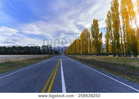 Beautiful Scenery Along The Way To Arrowtown In Autumn , South Island Of New Zealand