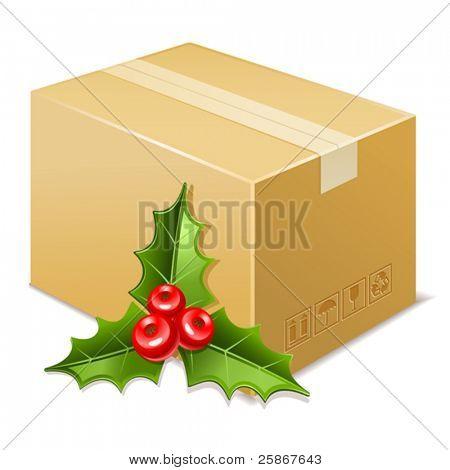 Christmas box icon. Mistletoe