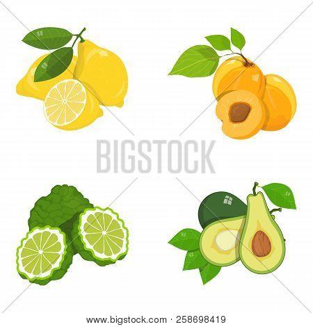 Ropical Fruits Set, Food, Exotic Fruits Set, Vegan Food, Various Fruit, Set Of Organic Healthy Food,