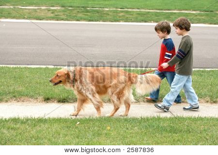 Boys Walking The Dog