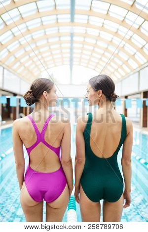 Rear vie wof two young women in swimsuits standing by poolside before diving into water