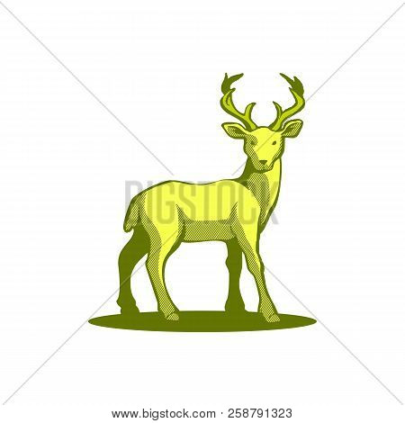 Save Download Preview Vector Element Cartoon Deer. Deer Icon Art. Deer Icon Eps. Deer Icon Image. De