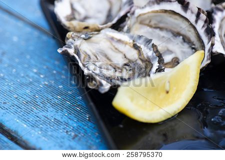 Closeup Of Fresh Shucked Oysters.