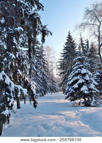 Winter Siberian City Park, Omsk Region Russia