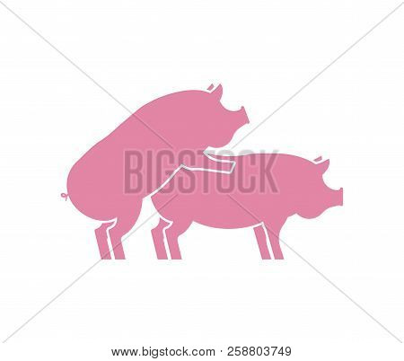 Pig Sex Icon. Piggy Intercourse Sign. Pigs Isolated. Farm Animal Reproduction